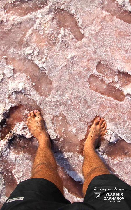 Босиком по розовому лиману. Ноги в соли