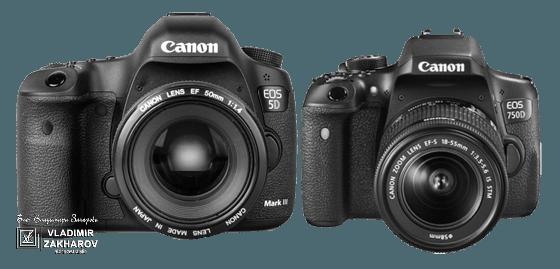 Кроп, Canon 5D b 750 D..