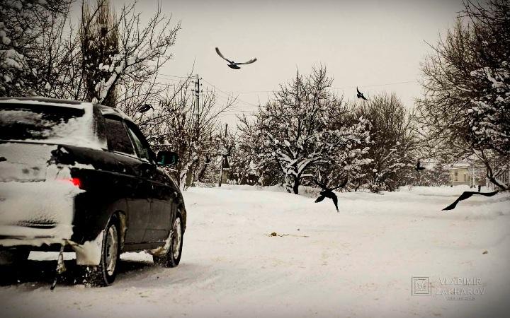 Зима Машина и вороны.