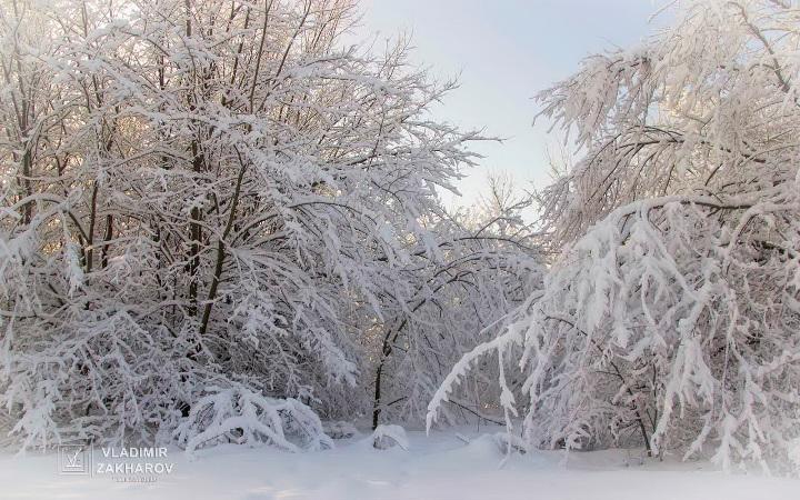 Зима 1.