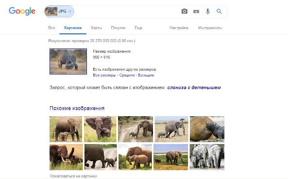 Поиск по изображению Google картинки 2