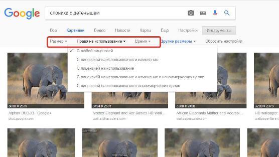 Поиск по изображению Google картинки 3