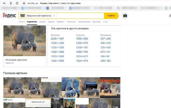 Поиск по изображению Яндекс картинки 4