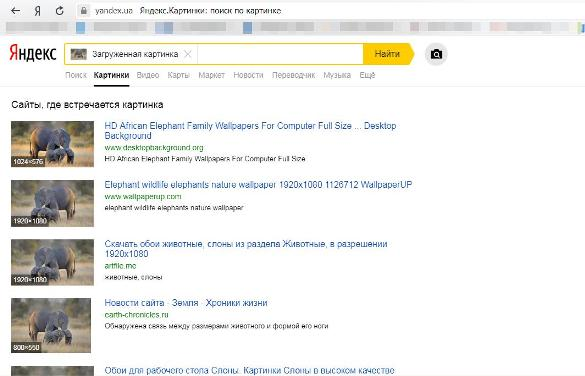 Поиск по изображению Яндекс картинки 5