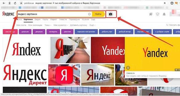 Поиск по изображению Яндекс картинки