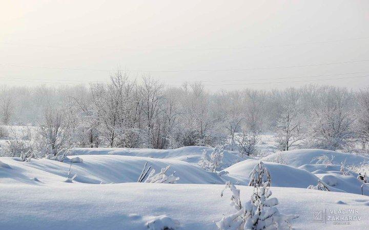 Зимний лес 5.