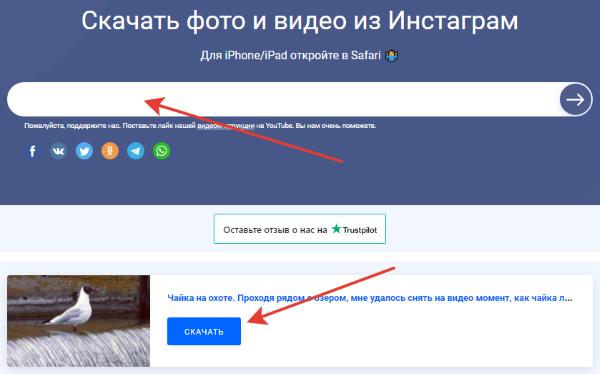 igrab.online сервис скриншот